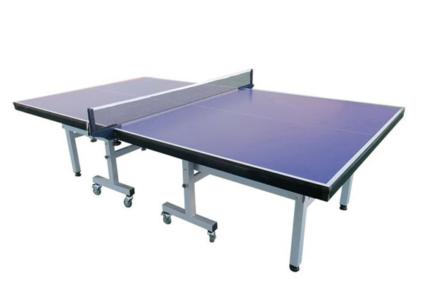 table tennis table for sales